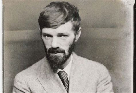d h lawrence and d h lawrence the rage and callousness the tls