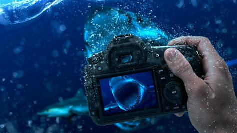 camera wallpaper free download underwater photography manipulation full hd wallpaper and