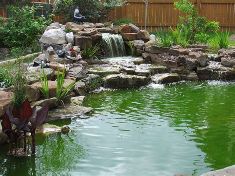 the secret to crystal clear pond water the pond doctor