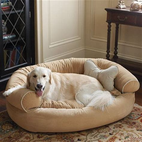 comfy couch pet bed comfy couch pet bed titan lucy pinterest
