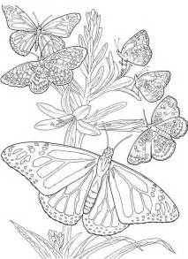 267 coloring pages images coloring books drawings coloring sheets