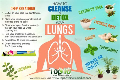 How To Do A Cleanse Detox At Home by Image Gallery Lung Health Tips