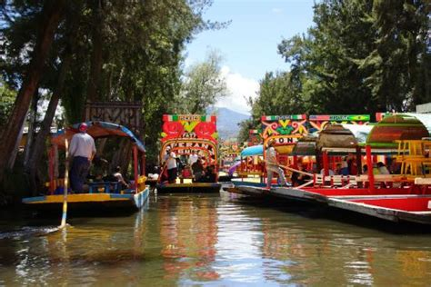 The Floating Gardens Of Xochimilco by Ogrody Xochimilco 3 Picture Of Floating Gardens Of
