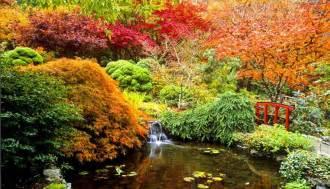imagenes de jardines turisticos canad 225 y el paseo de ensue 241 o en los jardines butchart fotos