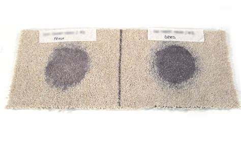 Which Carpet To Buy Uk - which reveals carpet stain removers that work which news