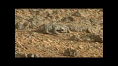 imagenes extrañas de otros planetas seres vivos en planeta marte youtube