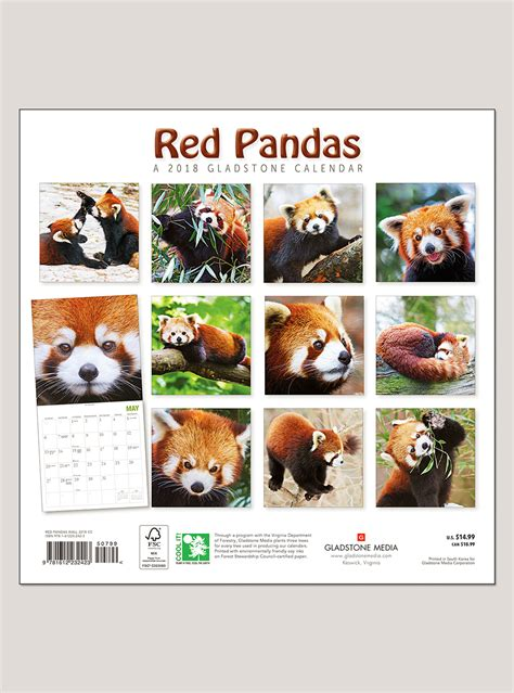 pandas 2018 calendar books 2018 pandas 12 quot x 12 quot wall calendar shop the