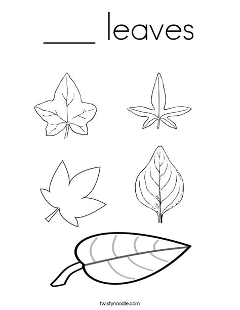 leaf identification coloring pages leaf identification coloring pages