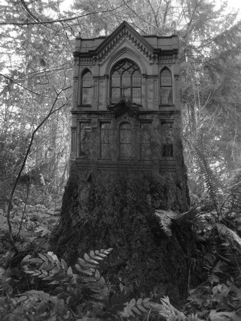 gothic victorian house in forest beautiful victorian absolutely beautiful gothic home in the forest i would