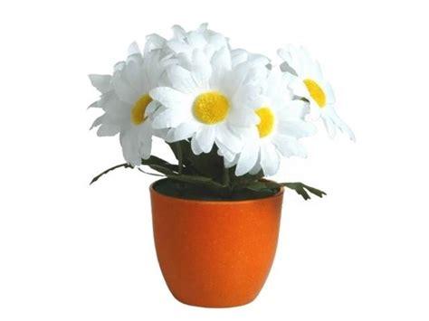 immagini vasi con fiori vasi fiori vasi