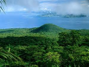 What Does Canopy Mean In Geography by Rain Forest Facts And Information