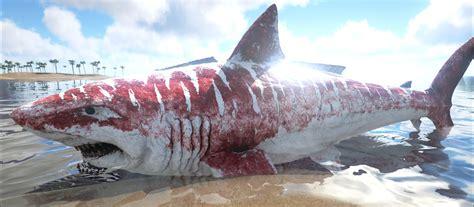 most dangerous most dangerous sea creatures of all timesb list of top ten
