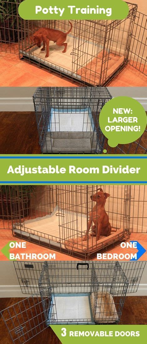 indoor dog bathroom solutions 8604 best images about puppy dog on pinterest chihuahuas
