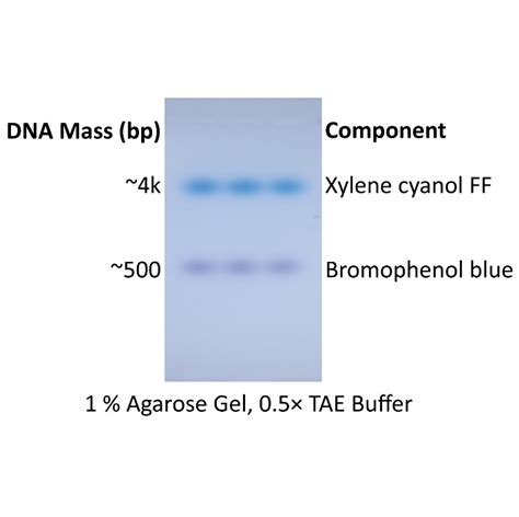problems with buffer telnetlib migrated cambio excellence in molecular biology