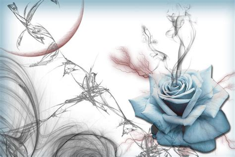 abstract rose wallpaper abstract blue rose beautiful wallpaper hd wallpapers