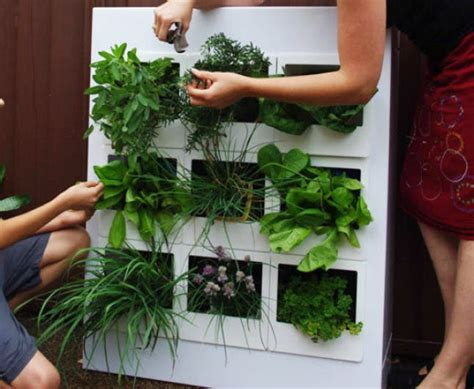 vertical herb garden indoor 20 ways to start an indoor herb garden brit co