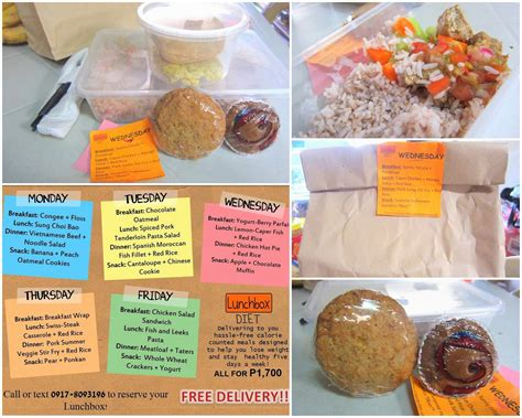 Diet Meal Box the lunch box diet review callmekristine
