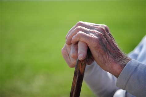 holding the net caring for my on the tightrope of aging books bring and goodness to aging parents by susan