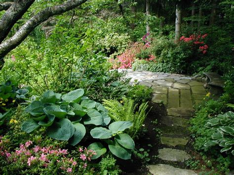 shaded backyard ideas shade garden path contemporary landscape other metro