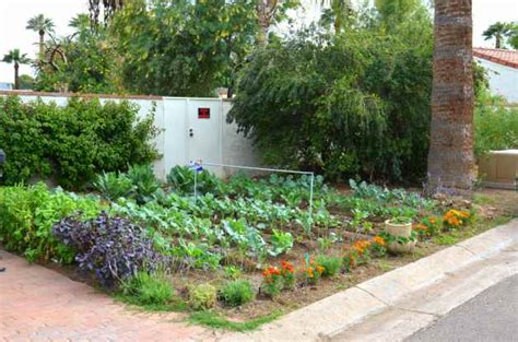 Vegetable Garden Ideas For Small Yards Small Space Vegetable Gardening Ideas Birds And Blooms