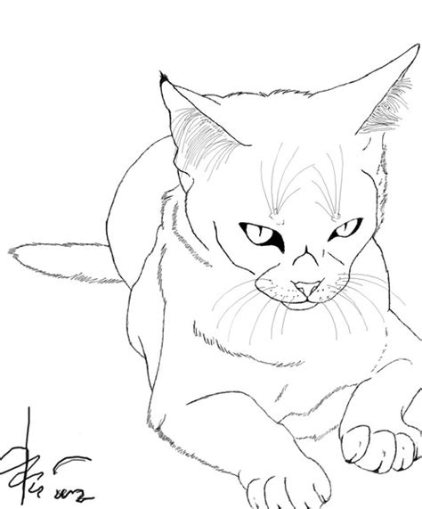 pin realistic cat coloring pages index of on pinterest