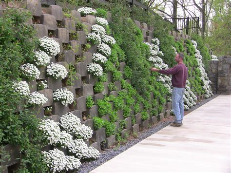 Open Backed Blocks In Action In A Real Living Wall As It Plants For Garden Walls