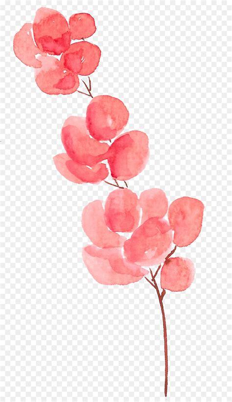 petal flower watercolor painting watercolor flowers png