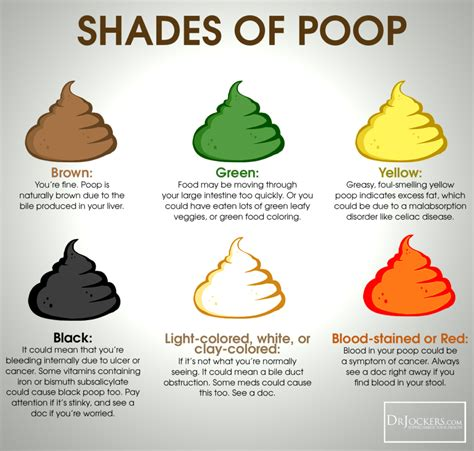 dark green color meaning 16 ways to achieve a healthy poop green colored stool