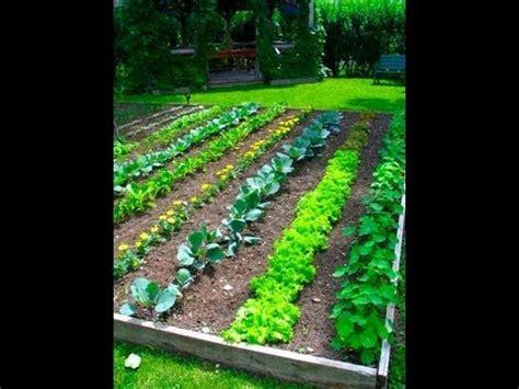 youtube garden layout garden project garden layout youtube