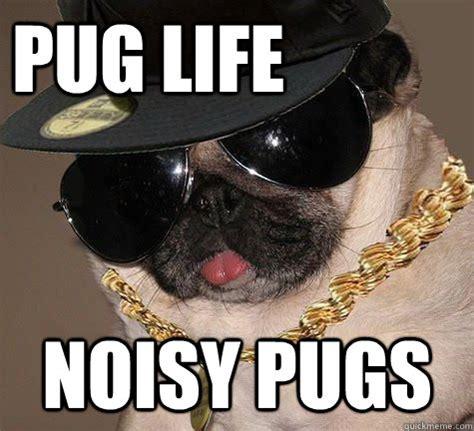 Gangster Meme - didn t choose the pug life the pug life chose me