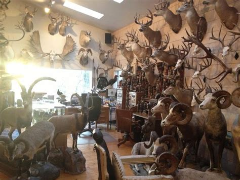 trophy rooms jim shockey s trophy room a can to someday this garage room