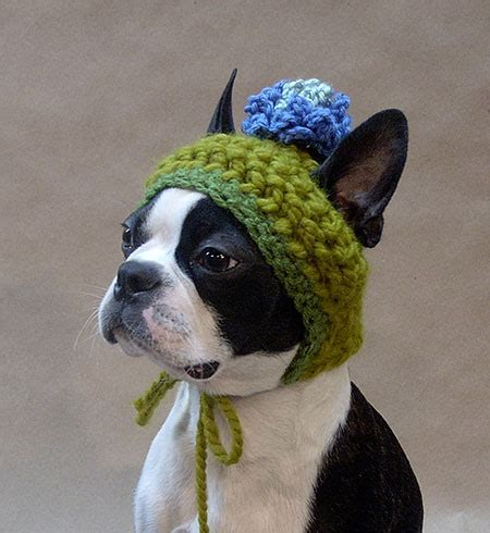crochet puppy hat crocheted hat 187 amazing pictures