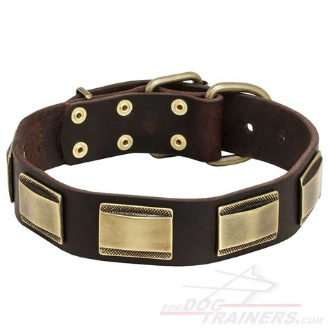 Handcrafted Collars - get war style best collar adorned plates