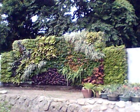 philippine vertical garden and green wall installers home