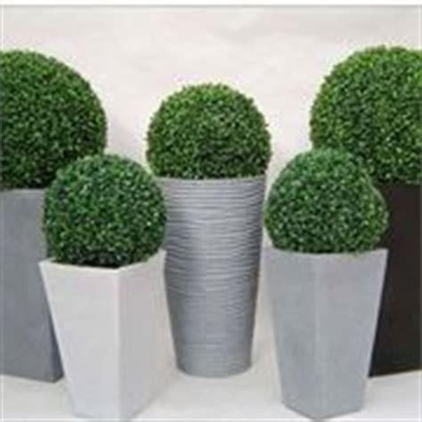 piante ornamentali da interno finte piante finte da interno piante finte piante finte interno