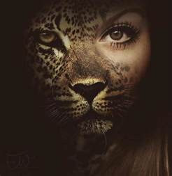 Half Jaguar Half Leopard Transform Into Half Human Half Cat Leopard Some