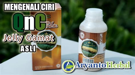 Qnc Jelly Gamat Herbal Tv qnc jelly gamat asli 100