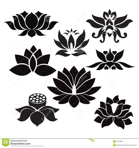 lotus flowers tattoo illustration on white background