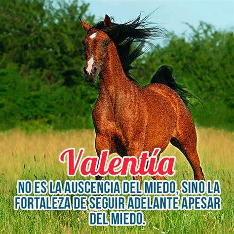 imagenes y frases de valentia imagenes bonitas de caballos con frases cortas de