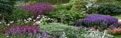 Vaste Planten Border Beplantingsplan by Hoveniersbedrijf Sonetta Uw Oase Rust Na Een