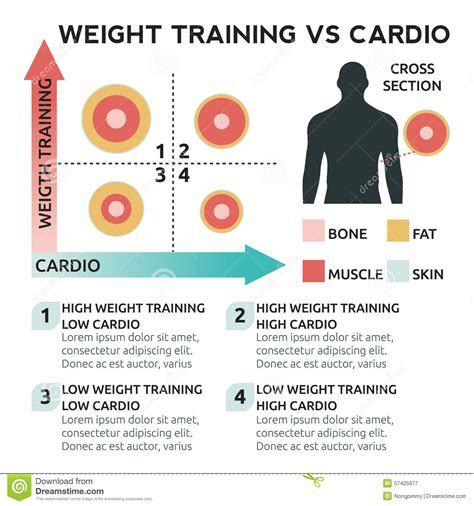 Strength For Loss weight versus cardio for weight loss