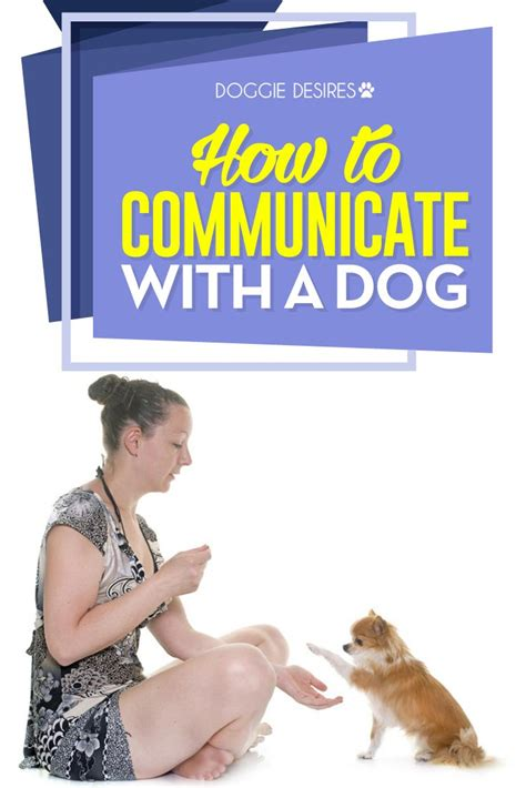 how to communicate with dogs 6939 best images about pet products projects safety and ideas on