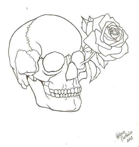 Scribble Outline by Skull And Outline By Lena Lu On Deviantart