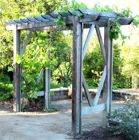 diy grape arbor simple diy pergola free building plan