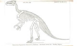 printable dinosaur skeleton photo printable dinosaur