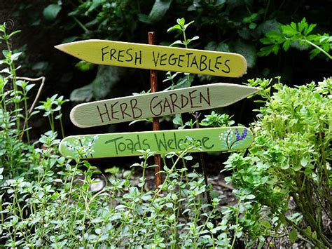 Herb Garden Signs by Herb Garden Sign Toads Welcome Crafts By Amanda