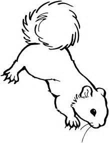 Ground squirrel coloring page squirrel african coloring ground