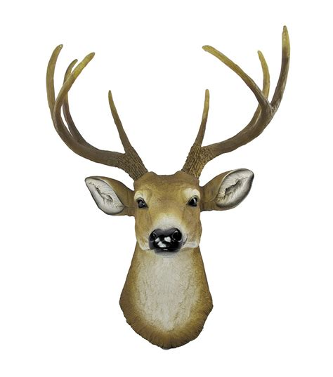 deer head buck head clipart best