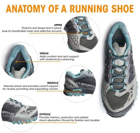 parts of a running shoe running shoe anatomy explained trading post