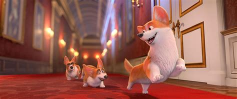 the queen s corgi nwave pictures onthult the queen s corgi animatieblog